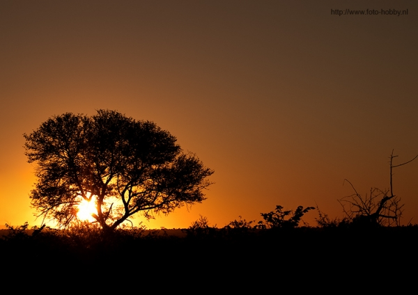 South Africa sunrising_49